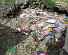 Plastic and trash found around the coasts of Sabah.