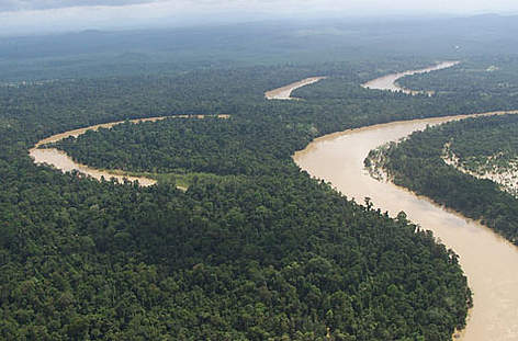 The Kinabatangan floodplain is an area of enormous importance for wildlife and and the local ... rel=