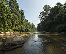 Ulu Muda is a water catchment forest in Kedah that provides 96% of Kedah's water, 80% of Penang's water and 40% of Perlis's water supply.